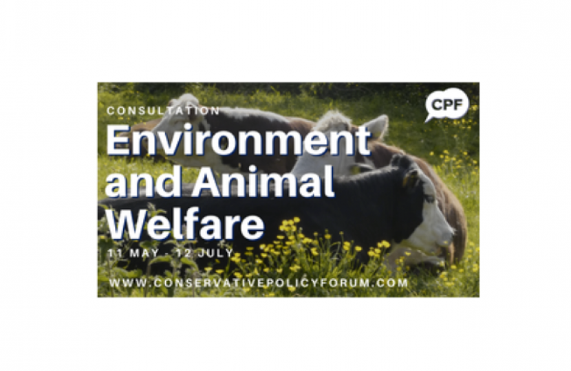 Environment and Animal Welfare